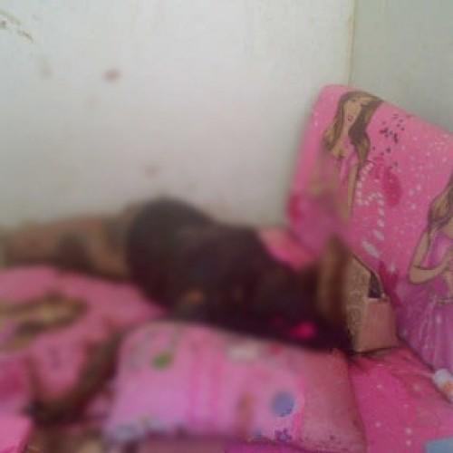 Fitri Cintia Ariesta ditemukan tak bernyawa di tempat tidur pada kamarnya, Jumat (20/6/14). (Foto; Tomi)