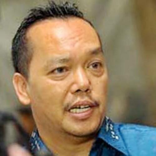 Wakil Sekjen Partai Demokrat, Ramadhan Pohan