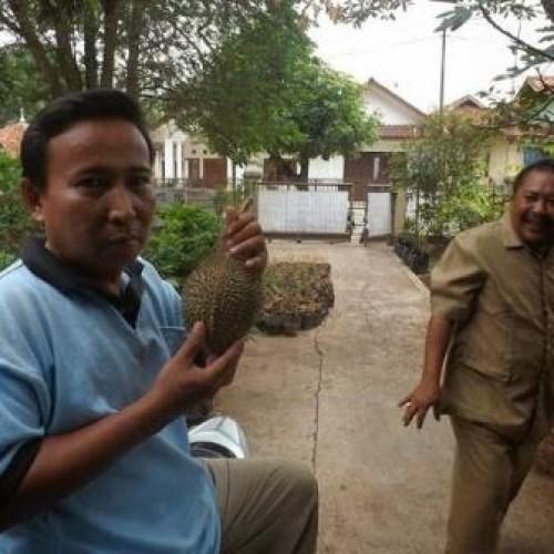 Telagasari Kembangkan Durian asli Karawang