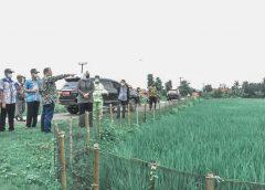 Pemkab Siapkan Lahan 12 Hektar untuk Pemakaman Umum